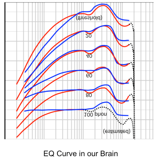 EQ Curve in our brain
